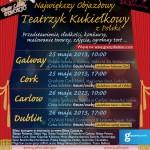 Polski Dzień Dziecka w Irlandii