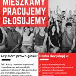 Mobilizacja Polonii w Irlandii przed irlandzkimi wyborami lokalnymi